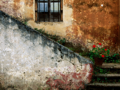 Adobe Stairs with Geraniums Stretched Canvas Print