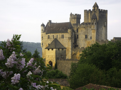 Chateau of Beynac with Lilac Bush in Foreground Stretched Canvas Print