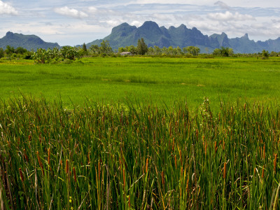 Peaks in Khao Sam Roi Yot National Park across Fields Stretched Canvas Print