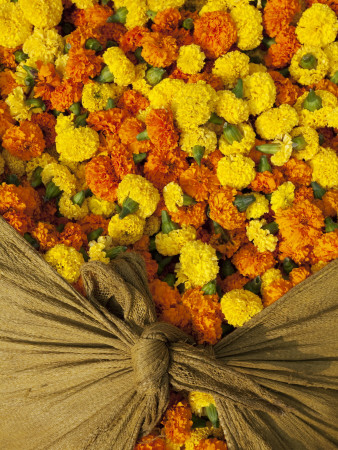Single Marigolds of Yellow and Orange are Sold by Bagful to Local Worshippers Stretched Canvas Print