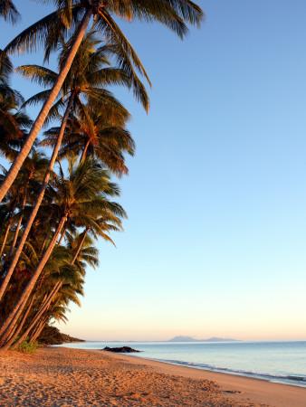 Dawn on Ellis Beach, Near Palm Cove Stretched Canvas Print