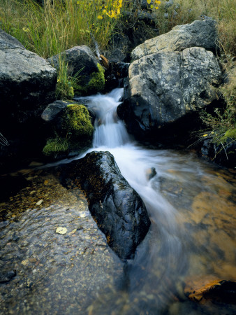 North Creek Tumbles Through Boulders, Schell Creek Range, Mt. Grafton Wilderness, Nevada, USA Stretched Canvas Print