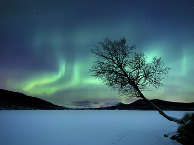 Aurora Borealis over Sandvannet Lake in Troms County, Norway Stretched Canvas Print