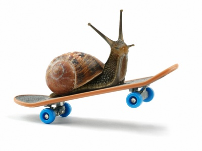 Snail Riding Skateboard Stretched Canvas Print