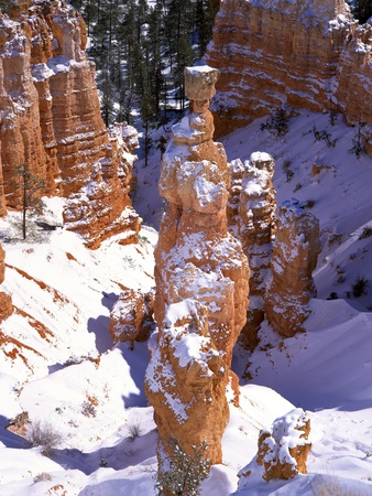 Thor's Hammer Hoodoo in Bryce Canyon National Park Stretched Canvas Print