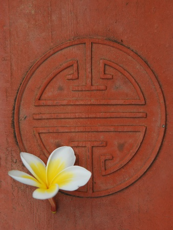 Long Life Symbol and Lotus Flower Stretched Canvas Print
