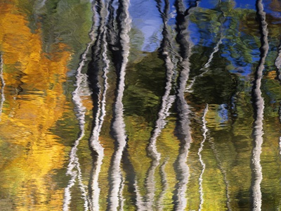 Autumn Reflections in Kilbear Provincial Park, Ontario, Canada Stretched Canvas Print