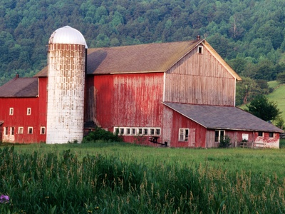 Older Barn With Silo in Lush Greenery Stretched Canvas Print
