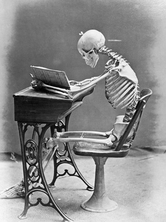 Skeleton Reading at Desk Stretched Canvas Print