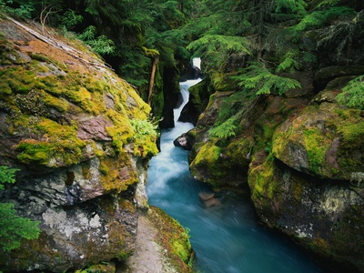 Avalanche Creek Stretched Canvas Print