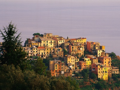 Village of Corniglia on the Italian Riviera Stretched Canvas Print