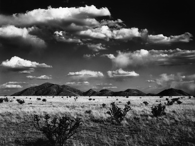 Desert Landscape, 1969 Stretched Canvas Print