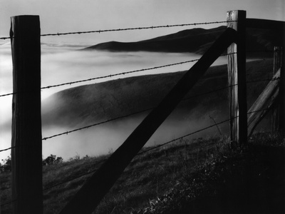 Fence and Hills, Big Sur, 1962 Stretched Canvas Print
