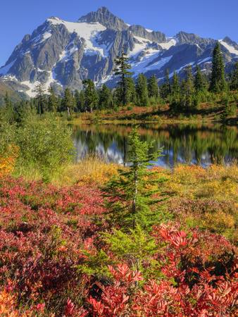 Picture Lake, Mt. Shuksan, Heather Meadows Recreation Area, Washington, Usa Stretched Canvas Print