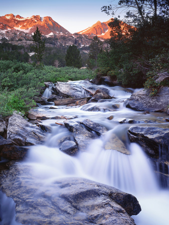 Stream Runs Through Lamoille Canyon in the Ruby Mountains, Nevada, Usa Stretched Canvas Print