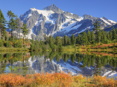 Reflected in Picture Lake, Mt. Shuksan, Heather Meadows Recreation Area, Washington, Usa Stretched Canvas Print