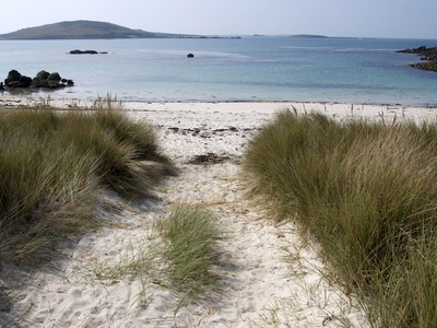 Rushy Bay, Bryher, Isles of Scilly, United Kingdom, Europe Stretched Canvas Print