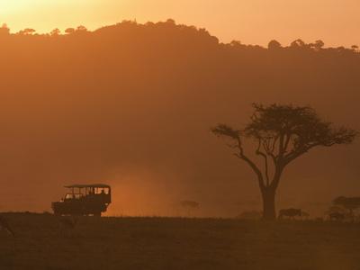 Masai Mara, Kenya, East Africa, Africa Stretched Canvas Print