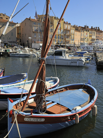 Fishing Boats in Vieux Port Harbour, St. Tropez, Var, Provence, Cote D'Azur, France, Mediterranean, Stretched Canvas Print