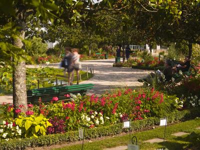 People Walking Through the Jardins Botanique (Botanical Gardens), Tours, Indre Et Loire, Centre, Fr Stretched Canvas Print