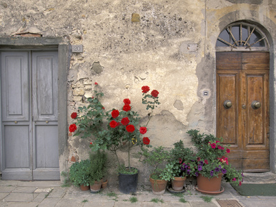 Tuscan Doorway in Castellina in Chianti, Italy Stretched Canvas Print