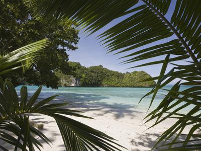 Sandy Beach in Rock Islands, Micronesia, Palau Stretched Canvas Print