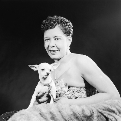 Famed Jazz Singer Billie Holiday with Her Pet Chihuahua,1957 Stretched Canvas Print