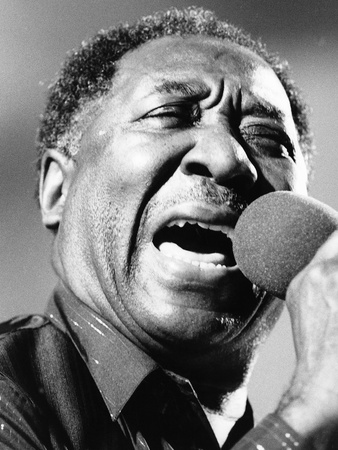 Muddy Waters Stretched Canvas Print