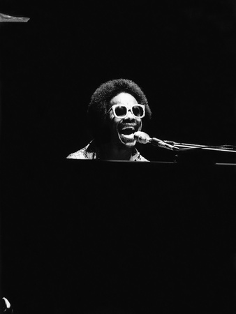 Stevie Wonder Stretched Canvas Print