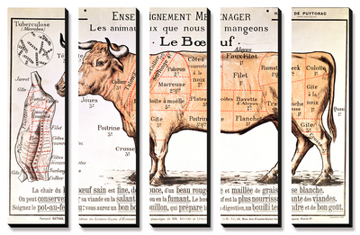 Beef: Diagram Depicting the Different Cuts of Meat Canvas Art Set