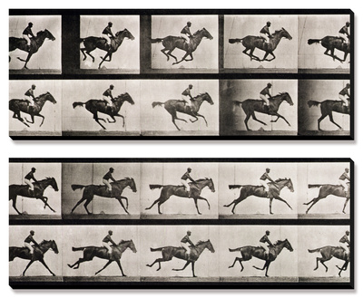 """Jockey on a Galloping Horse, Plate 627 from """"Animal Locomotion,"""" 1887 Canvas Art Set"""