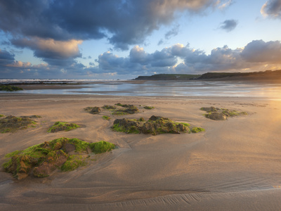 Early Morning, Widemouth Bay, Cornwall, England, United Kingdom, Europe Stretched Canvas Print