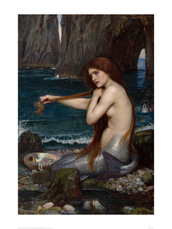 a mermaid  1900 print by john