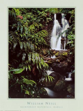 Rainforest Waterfall, Hawaii Print