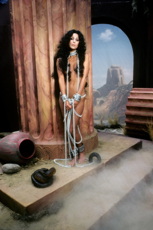 Cher Stretched Canvas Print