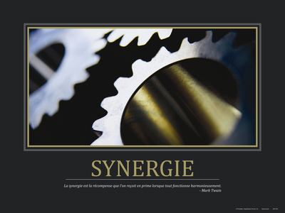Synergie (French Translation) Stretched Canvas Print