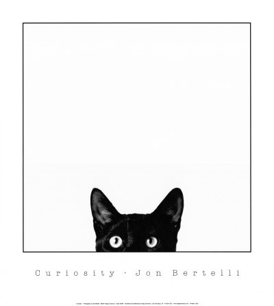 Curiosity Jon Bertelli Art Print