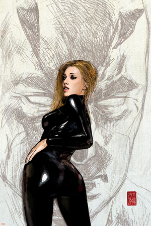 Daredevil No.64 Cover: Black Widow Fighting Stretched Canvas Print