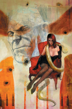 Punisher War Journal No.16 Cover: Princess Python Stretched Canvas Print