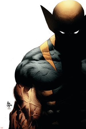 Wolverine: Origins No.28 Cover: Wolverine Stretched Canvas Print