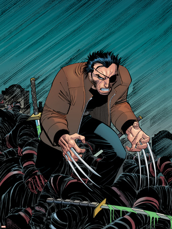 Marvel Must-Haves Wolverine No.20-22 Cover: Hand and Wolverine Stretched Canvas Print