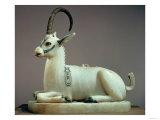 Wild Goats by Species