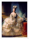 Chateau de Versailles (Versailles)