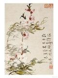 Li Shan