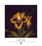 Robert Ichter