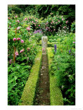 Garden Picture Library