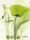 Chartreuse DEMO