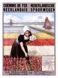 Netherlands Travel Ads (Vintage Art)