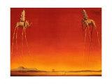 The Elephants by Dali