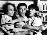 Three Stooges Everett Collection